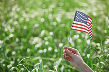 hand holding up an American flag in a corn field