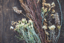 dried fall wildflowers