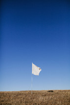 white flag flying in a field