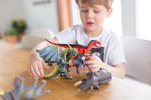 kids playing with toy dinosaurs and dragons
