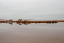 a calm lake at dawn