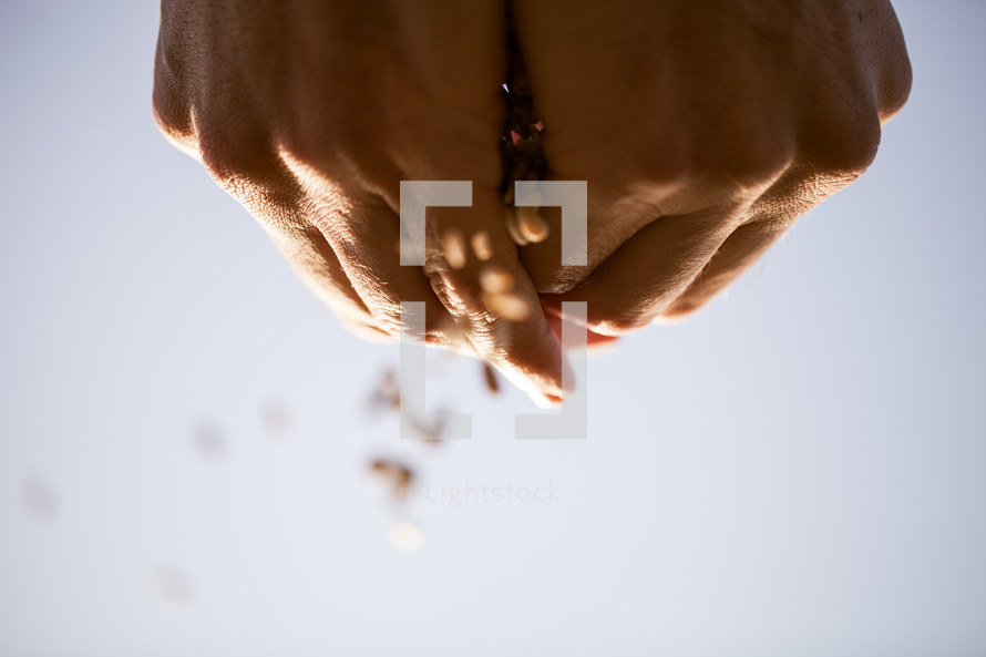 hands sprinkling seeds