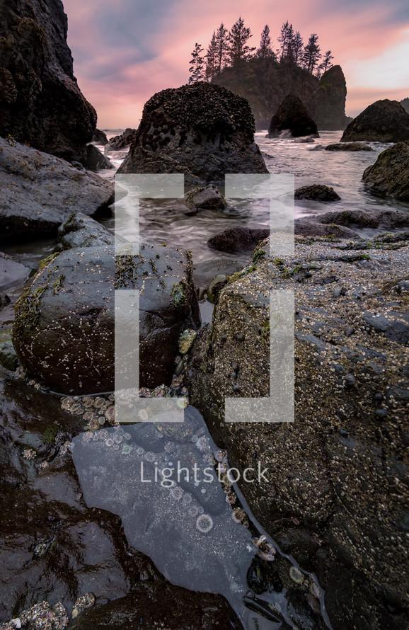 tide washing over rocks forming tide pools at sunset