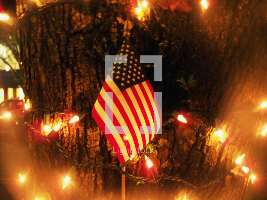 An American flag stands surrounded by Christmas lights in front of a tree in Gainesville, Florida during the Christmas holiday celebration.