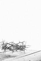 Jesus' Crown of Thorns