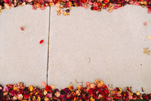 fall leaves on the edge of a sidewalk