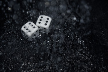 wet dice