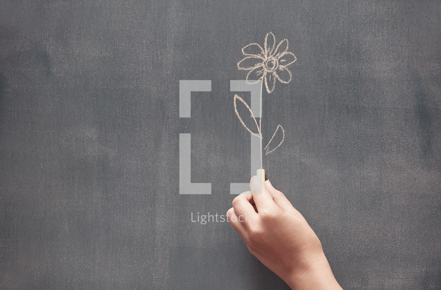 drawing a flower on a chalkboard