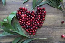 heart shaped cranberries