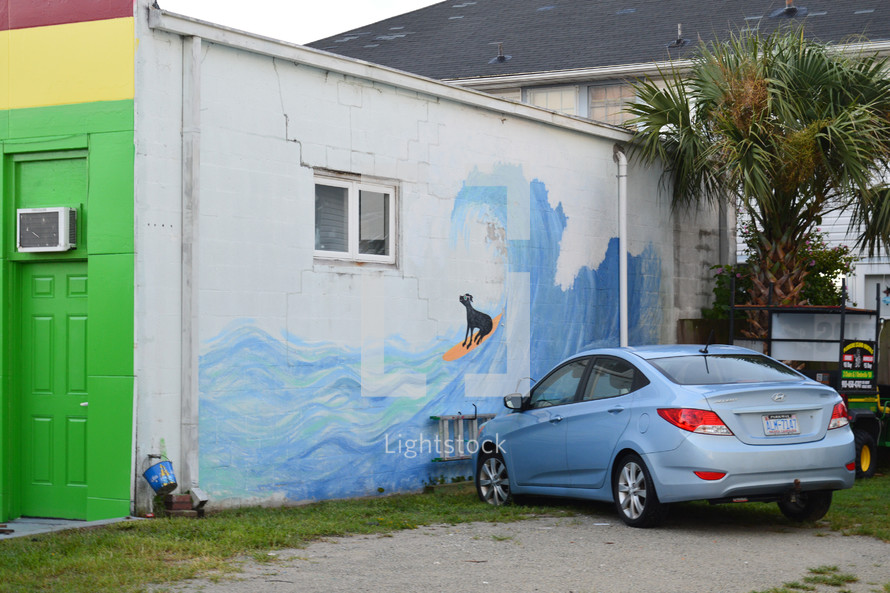 street art of a dog surfing a wave
