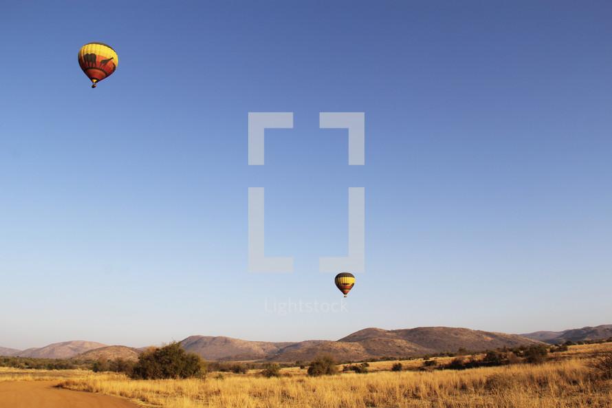 hot air balloons over savanna