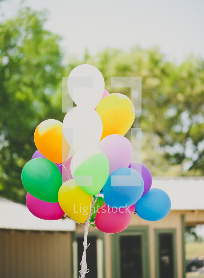 helium balloons in a bunch