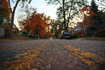 asphalt on a neighborhood road in fall