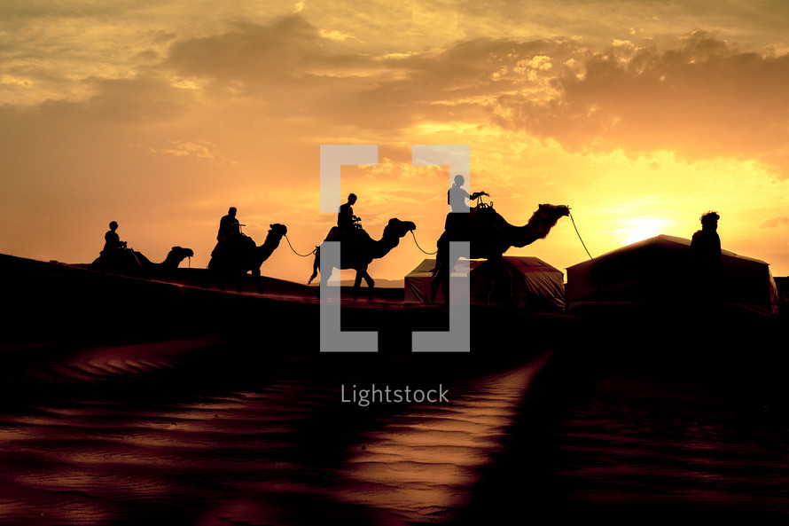 silhouettes of camels crossing a desert