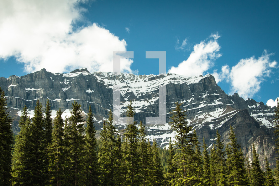 tree line and jagged mountains