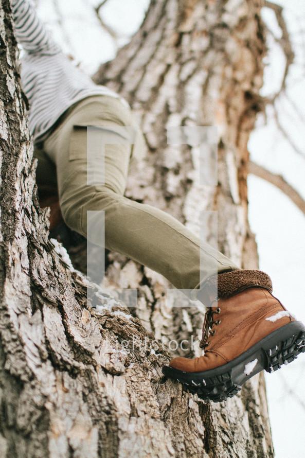 a woman climbing a tree