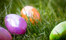 Multi-colored plastic Easter eggs in grass