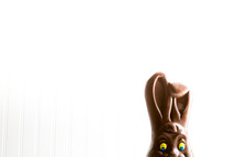 disappearing chocolate bunny