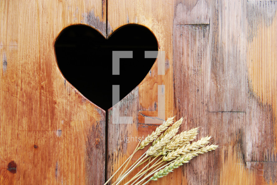 Heart shape cut out in wood background with wheat