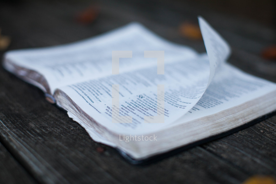 pages of a Bible flipping in the wind as it lies on a picnic table