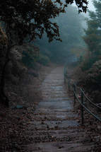 fall leaves on a wooden path