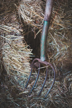 pitch fork in hay