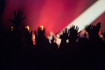 raised hands of audience members at a concert