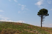 fence and rural landscape