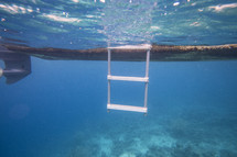 underwater view of a ladder from a boat