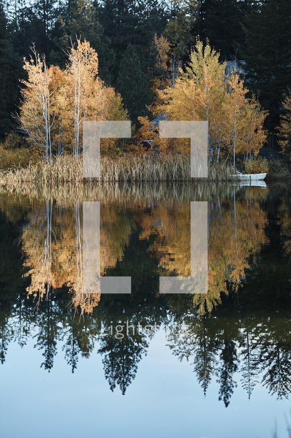 fall foliage reflecting on pond water