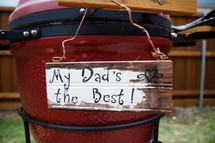 egg cooker grill - father's day gift