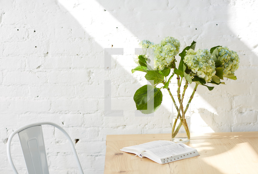 hydrangeas in a vase and open Bible on a table