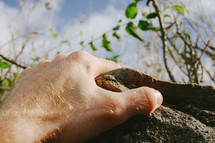hand reaching to grab hold of a rock