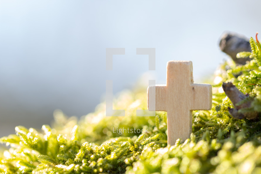 small wooden cross in a bush