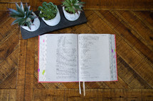 house plants and opened Bible