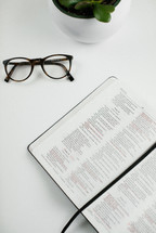 reading glasses, open Bible, and house plant on a white desk