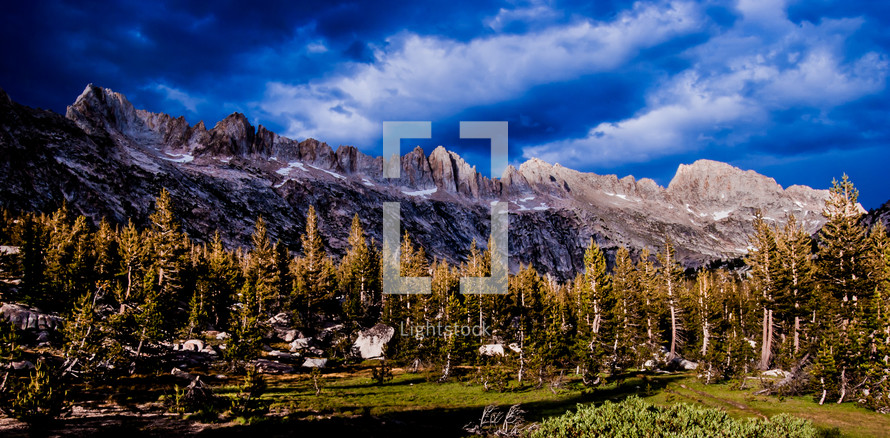 mountains and evergreen forest