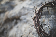 crown of thorns on a rock