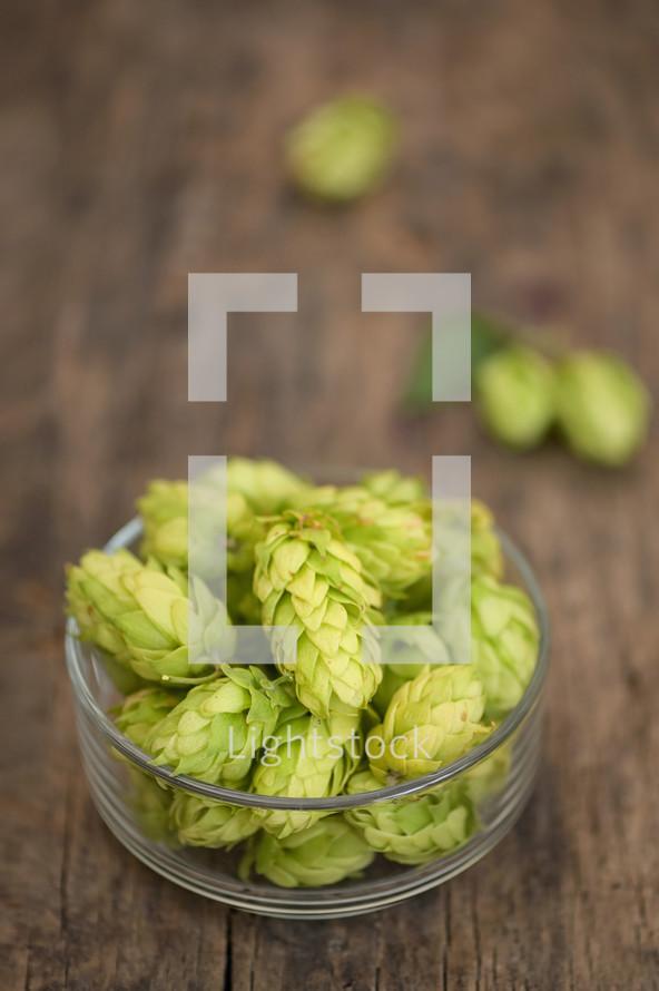 Bowl Of Fresh Green Hops