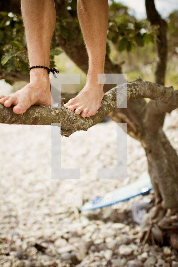 man walking barefoot on a tree branch