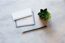 Stationary, thank you note, thank you card, and house plant on a white marble countertop