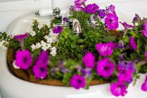 flowers in a sink