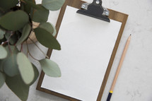 eucalyptus leaves, clipboard, white background, paper, pencil, taking notes, lecture, desk, podcast, desk, workspace