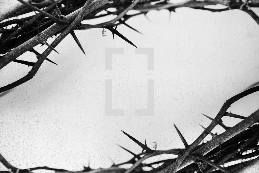 crown of thorns background.