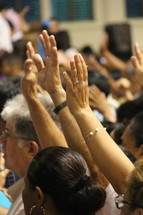 Large group worship with hands raised in adoration before the Lord