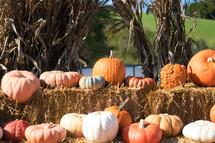 pumpkin on hay bales