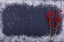 snow border and red berries