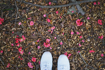 sneakers standing on sticks, flower petals, and dry leaves on the ground