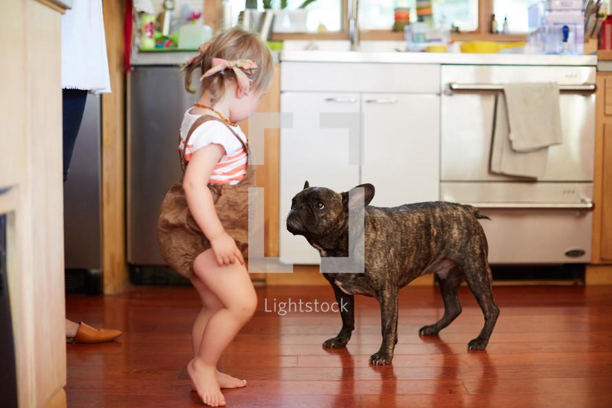 a toddler girl and a french bulldog