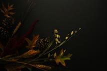 fall foliage on black background